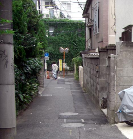 Yoyogi_cat200807